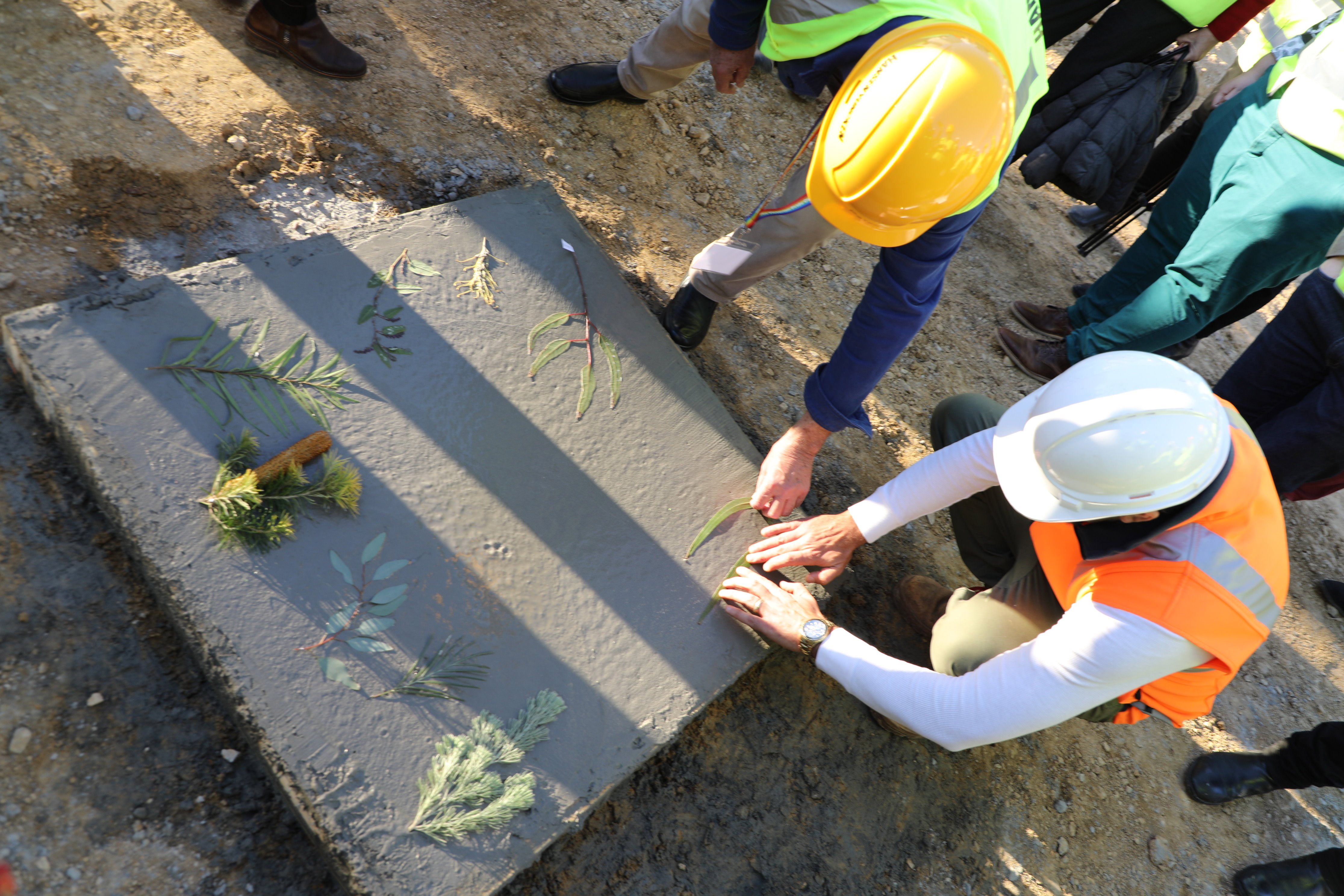The cornerstone is marked with Native Plants