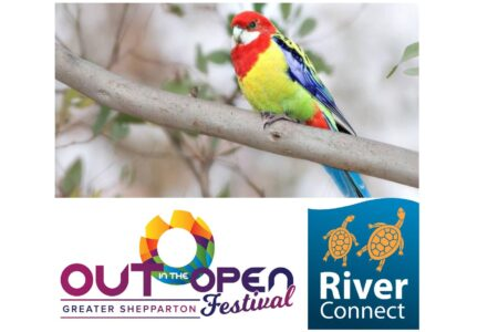 Queer Nature Connection (ONLINE/Shepparton)